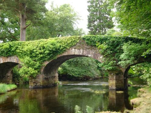 ireland-county_wicklow-derrybawn_bridge_05